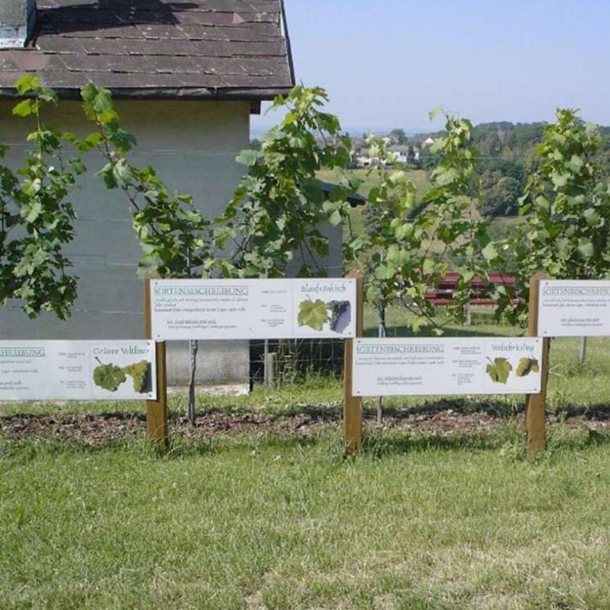 Lehrpfade in Rechnitz