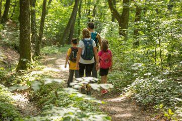 Wandern, Naturpark Geschriebestein