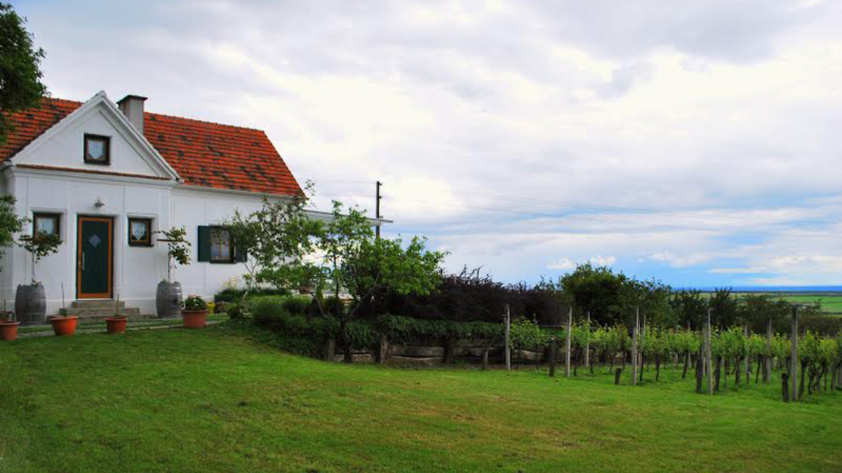 Appartment Panoramablick