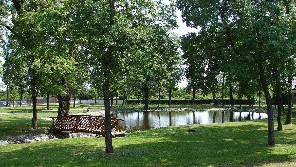 Teich im südlichen Teil des Parks