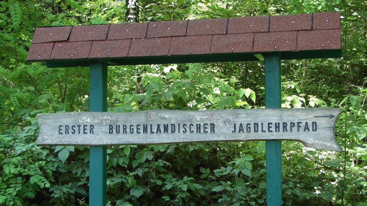 Erster burgenländischer Jagdlehrpfad