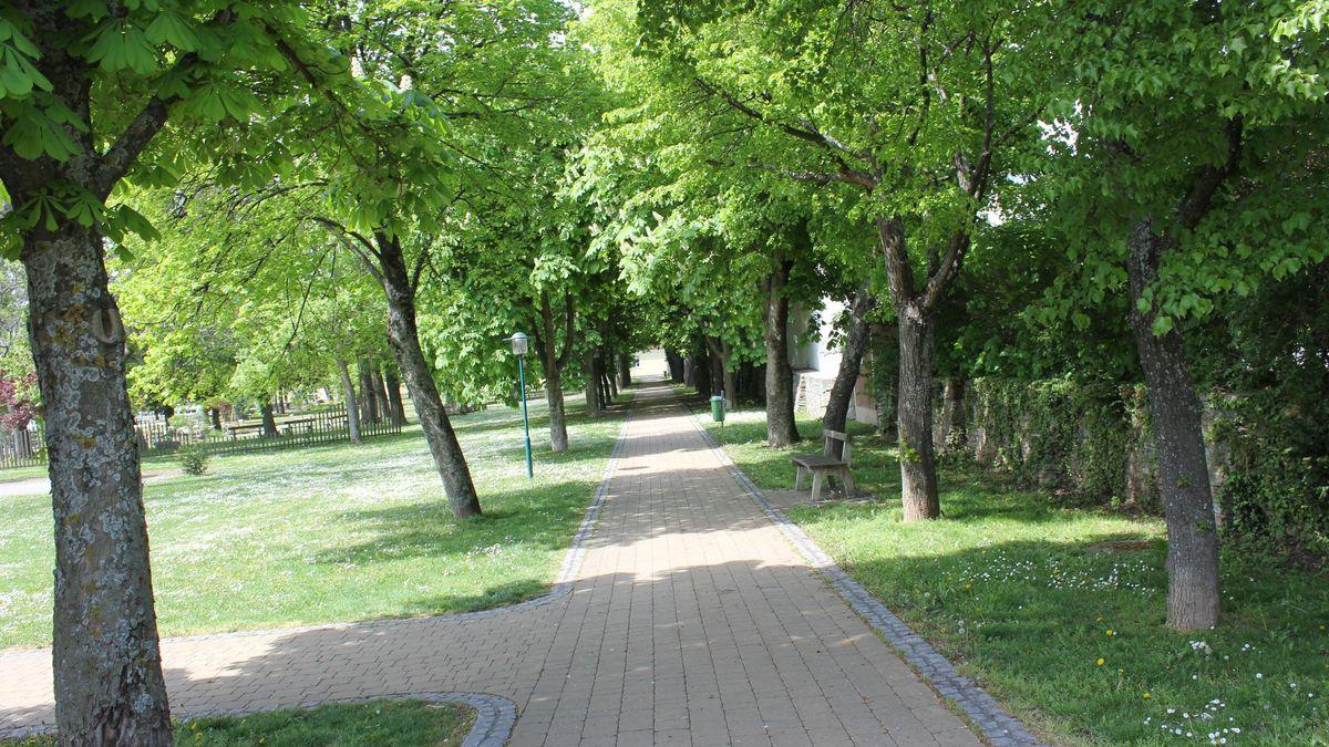 Spazierwege und stille Plätze mit Bänken