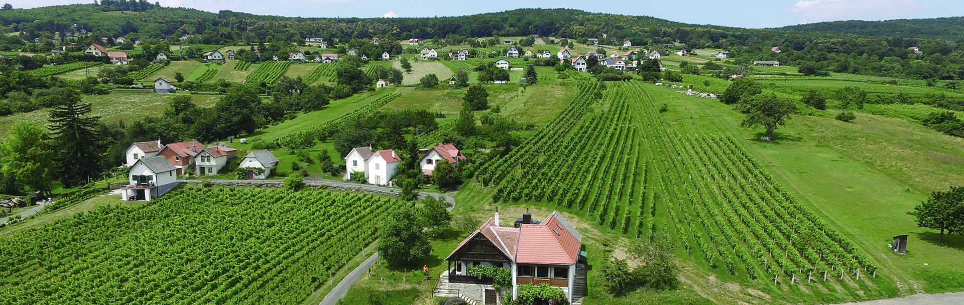 Weinort Rechnitz