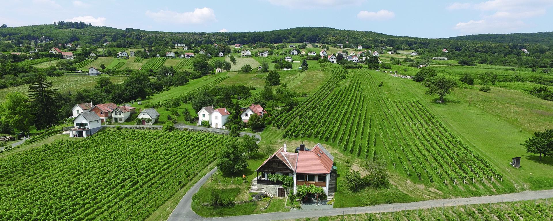 Wein und Marillenort Rechnitz