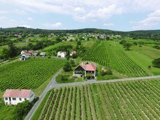 Ried Gatscher, Weingebirge Rechnitz