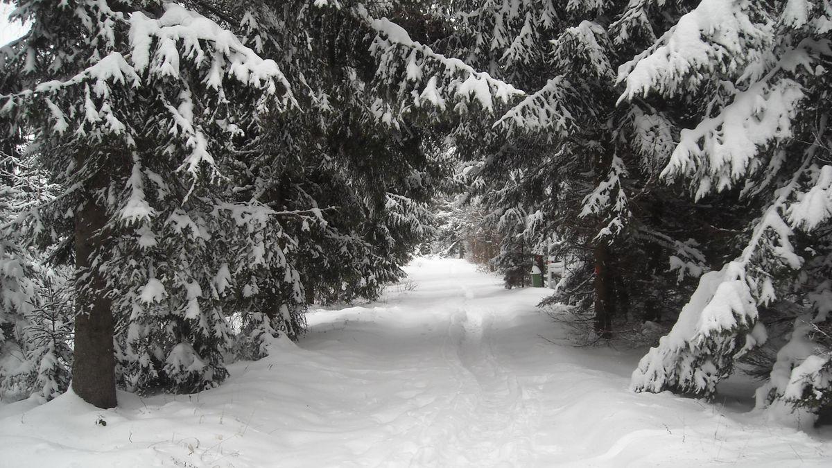 Wandern auch im Winter